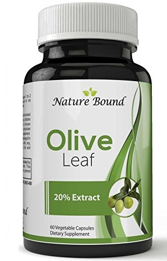 nature_bound_olive_leaf