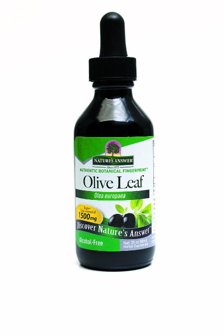 natures_answer_olive_leaf