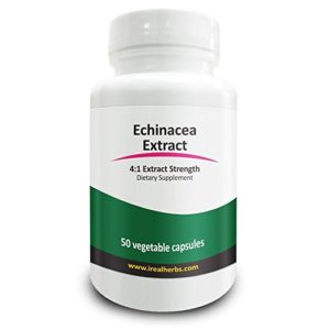 real_herbs_echinacea_extract